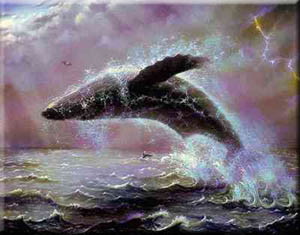 Sperm whale poems